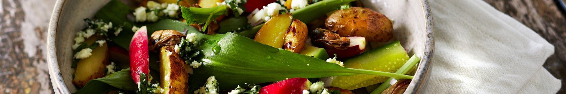 Radise + Salater