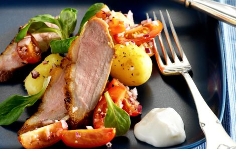 Letsaltet andebryst og kartoffel-tomatsalat