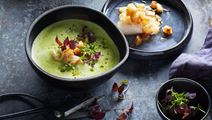 Cremet persillerodssuppe med torsk og karse