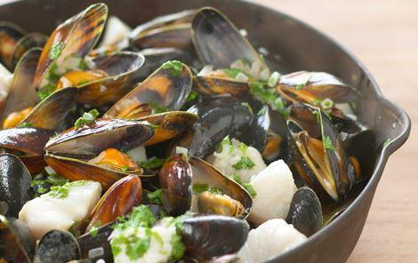 Muslinger og fisk med korianderfløde