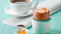 Blødkogt æg