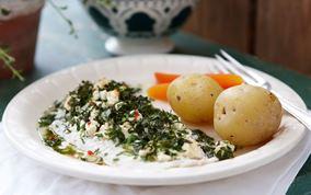 Fisk med krydderurter og salatost