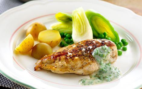 Persillesauce og grillstegte kyllingefileter