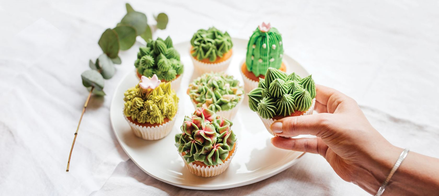 Succulent cupcakes eli mehikasvi muffinssit