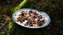 Lämmin kantarelli-pinaattisalaatti
