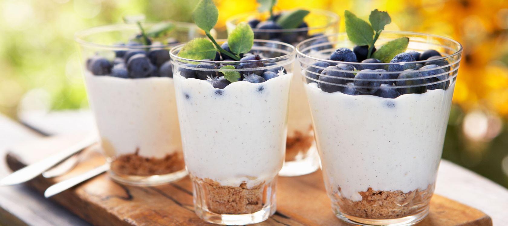 Lactosevrije vanilleyoghurt dessert