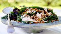 Matvetesallad med rostad majs och het yoghurtsås