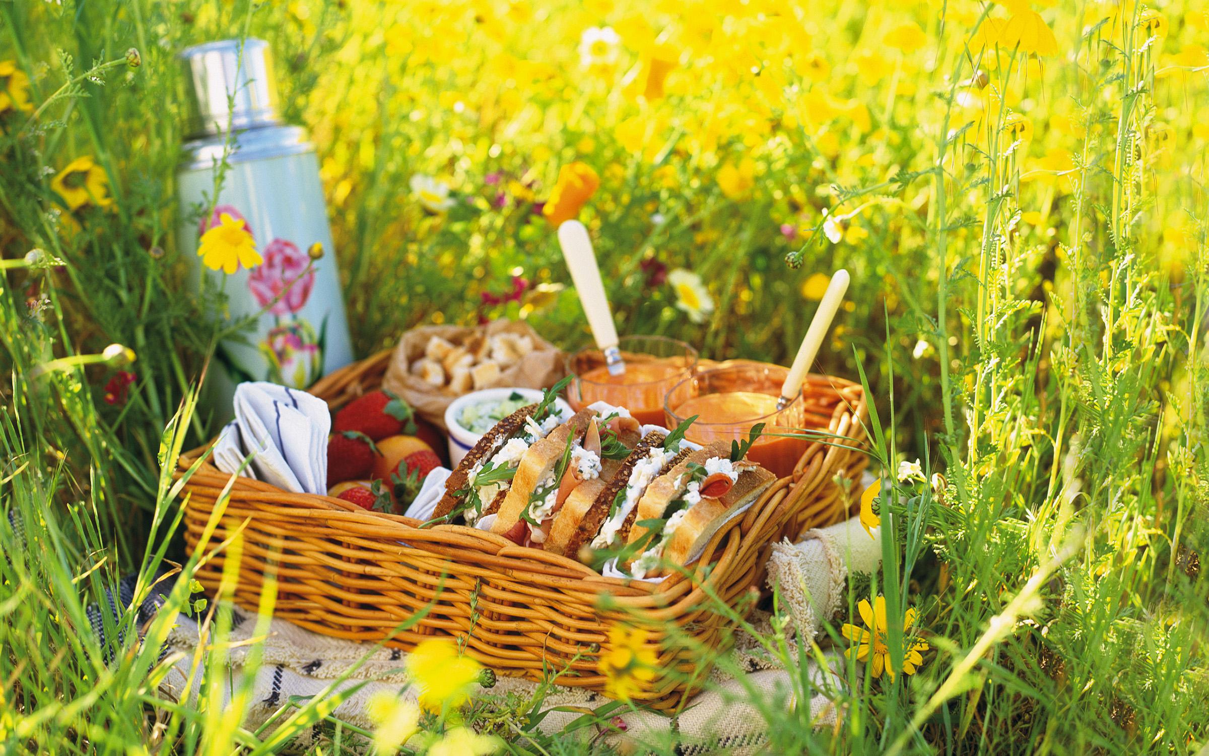 Picknick och utflykt