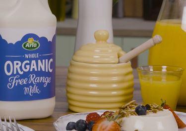Breakfast Honey Panna Cotta