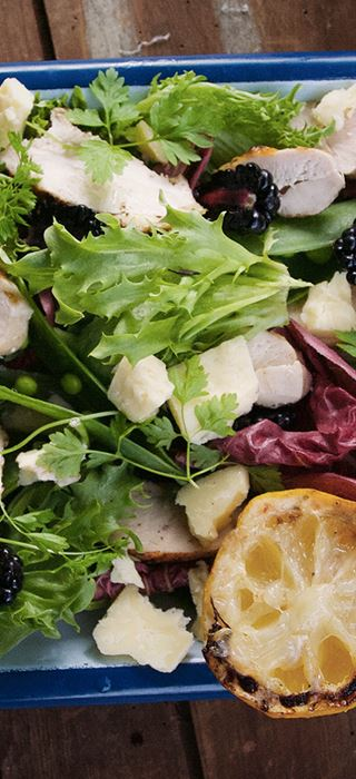 Salad with grilled chicken, blackberries & Cheddar