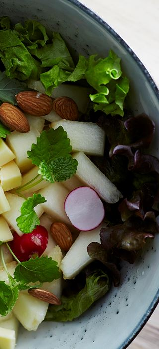 Summer salad with cheddar, melon and radishes