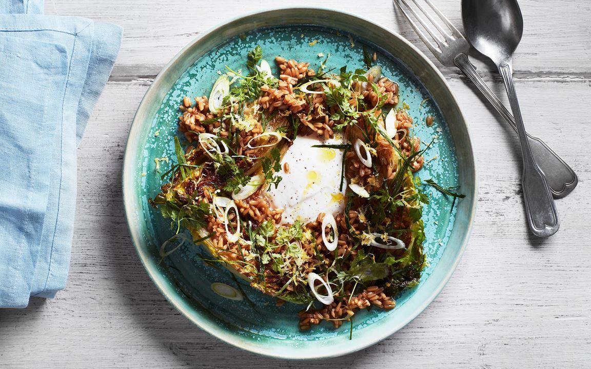 Stekt sallad med nakenhavre, yoghurt och örter