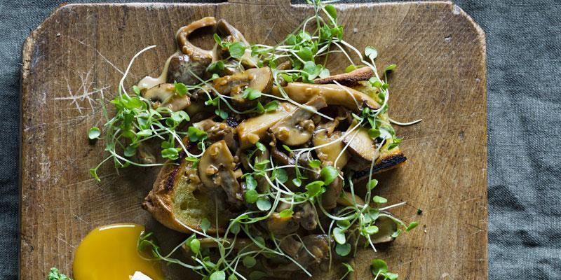 En krämig svampmacka är självklart på hösten när det är högsäsong för svensk skogssvamp. Hårdstek svampen och rör inte om i pannan för då kyls den ner och svampen blir kokt istället för stekt. Lite soja i stuvningen förstärker svampens umamismak.