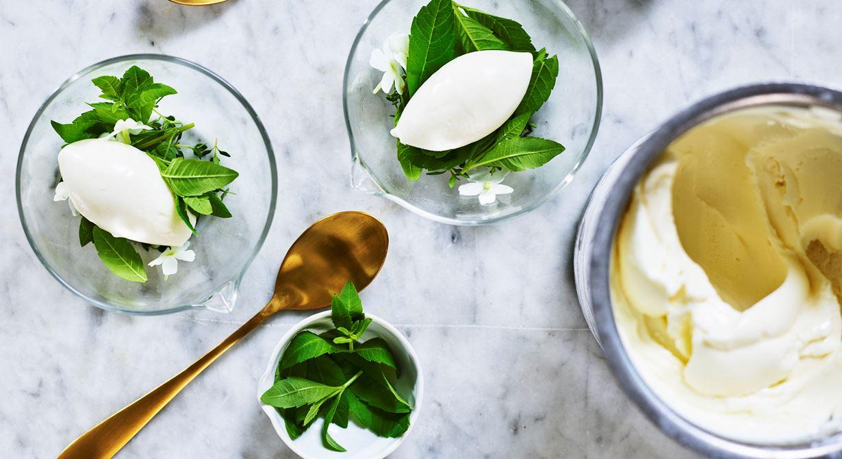 Yoghurtsorbeten har en hög, läskande syra och en rund smak av citronverbena. Passar till dessert eller som en frisk mellanrätt.