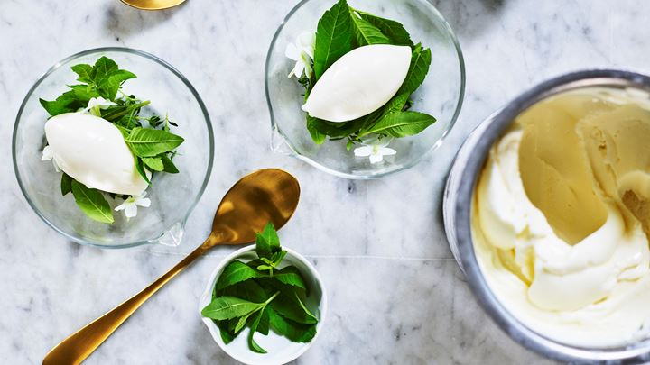 Yoghurtsorbet med citronverbena